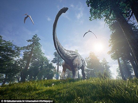 Sauropods were the first successful group of herbivorous dinosaurs, as they dominated most terrestrial ecosystems for more than 140 million years, from the late Triassic period to the late Cretaceous.